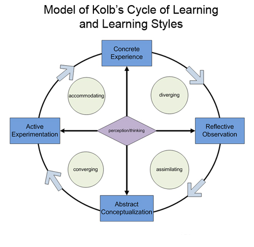 the learning cycle and learning styles of kolb and honey and mumford How different honey and mumford and kolb theory honey and mumford peter honey and alan mumford developed their learning based on the work of kolb.